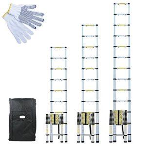 Échelle Télescopique Pro en Aluminium anodisé avec Housse de Transport et gants de maintien