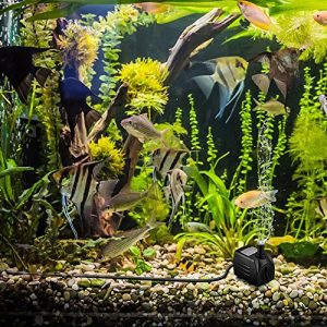 Meilleure pompe aquarium pas chère