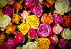 conserver bouquet de roses