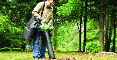 Caractéristiques du souffleur de feuilles Greenworks GD40BV