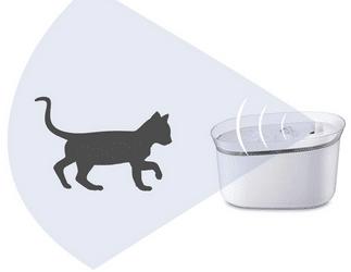 honeyguaridan Distributeur Fontaine d'eau Automatique et Intelligent pour Animaux
