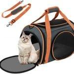 Comparatif pour choisir le meilleur sac de transport pour chat