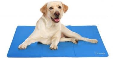 Test et avis sur le tapis rafraîchissant pour chien Pecute