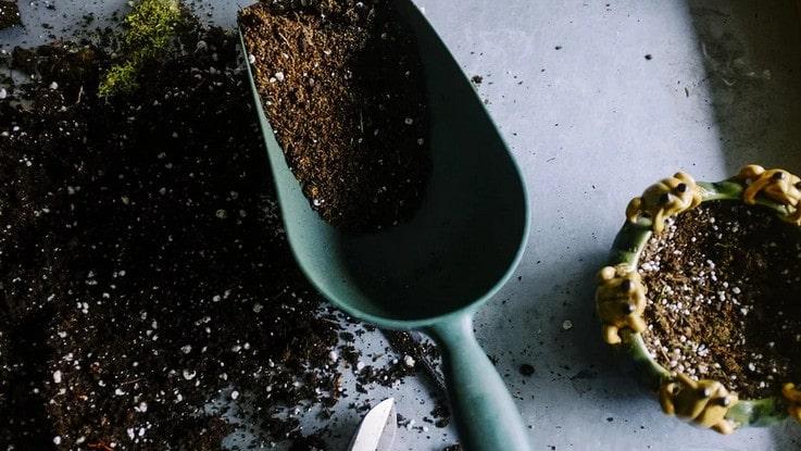 réaliser engrais naturel pour le jardin