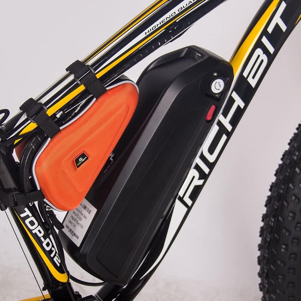Fat bike électrique Rich Bit Top-022