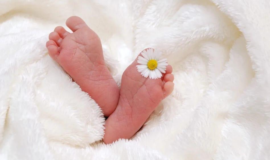 Choisir le meilleur site de faire-part de naissance en ligne
