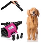 Comparatif pour choisir le meilleur pulseur chien